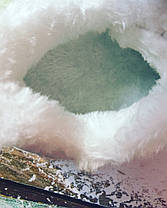 Кроссовки из Pu кожи осень- холодная весна  на меху  белые 34-40р., фото 2