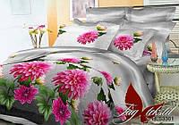 Комплект постельного белья Евро BR3301