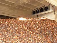 Напыление ППУ. Пенополиуретан - термоизоляция промышленных холодильных камер, складов, ангаров