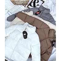Куртка женская молодежная короткая 42-46 в цветах