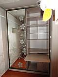 Шкаф - купе с частичным напылением. Шкаф-купе на заказ Днепр., фото 3