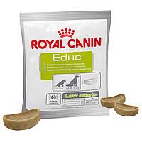 Тренировочное лакомство для собак Royal Canin Educ. 50г