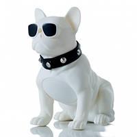 "Колонка портативна ""Французький Бульдог"", велика, біла, Портативная Bluetooth колонка SPS CH-M10 DOG"