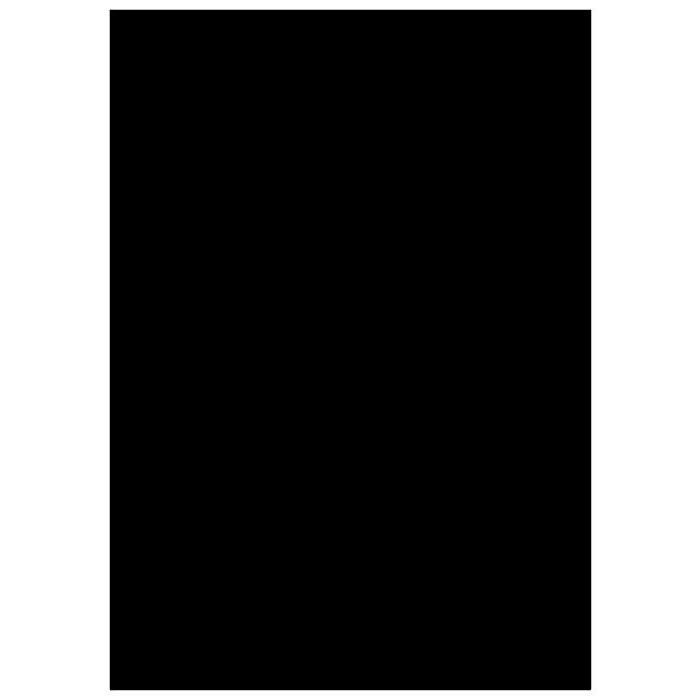 3х6м Фон студийный тканевый Visico PBM-3060  black - черный