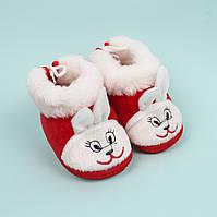 Пинетки теплые с опушкой для девочки Мишка размер 11,12,13