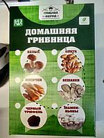 Чудо грибница, готовый засеянный мицелий для выращивания грибов дома 6 видов.