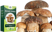 Грибница Золотой Урожай ✅ Чудо грибница, готовый засеянный мицелий для выращивания грибов 6 видов