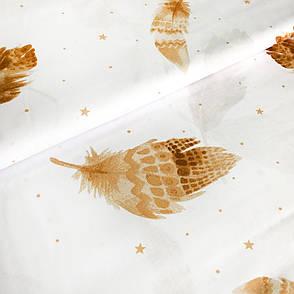 """Бязь Gold хлопковая """"перья оранжевые на белом 197"""", фото 2"""