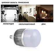 Лампа для постоянного света Visico FB-50 LED (50W), фото 6