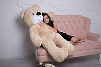 Плюшевый Мишка 180 см от Производителя Цвет Латте Медведь Большой Плюшевый Подарок
