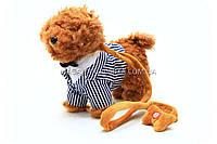 Интерактивная мягкая игрушка «Собачка с поводком» №4 JM8188-902, фото 1