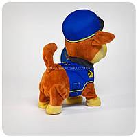 Интерактивная мягкая игрушка Чейз «Щенячий патруль» Чейз, фото 6