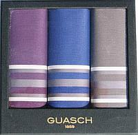 Комплект мужских носовых платков Guasch Apolo 96-06 (927)