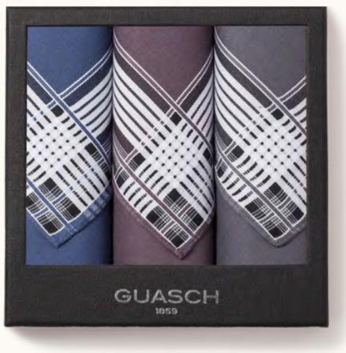 Комплект мужских носовых платков Guasch Apolo 96-01 (237)
