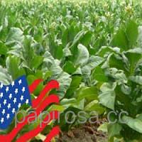 "Табачный ароматизатор ""USA Blend"" 10 мл."