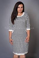 Стильное женское платье большого размера с замочком на спинке