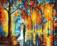 "VP 457 ""Дождливая свадьба"" Роспись по номерам на холсте 40х50см"