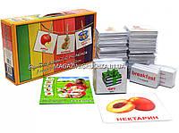 Развивающая игра Карточки Домана Англо-русский чемодан «Вундеркинд с пеленок» 1660 карточек арт. 488313