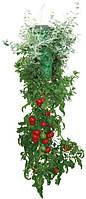 Плантатор для помидор Топси (Topsy Turvy), Плантатор для помідор Топсі (Topsy Turvy), Садовые принадлежности, Садові приналежності