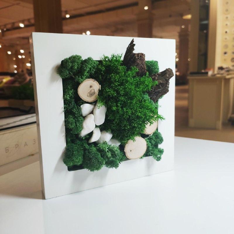 Картина Botania Art 200*200 мм из стабилизированных растений Норвегия
