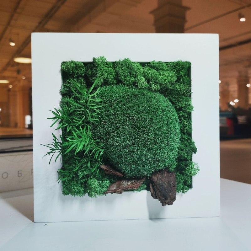 Картина  200*200 мм из стабилизированных растений Осло