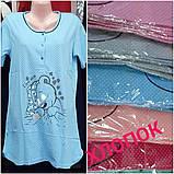 Молодежная ночная рубашка, хлопок 2хл, фото 3