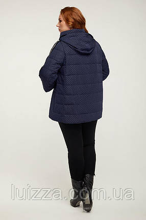 Женская куртка деми 48-64р, фото 2