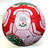М'яч футбольний Liverpool FB-0690, фото 2
