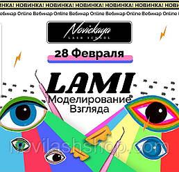 "Вебинар ""LAMI-моделирование"""