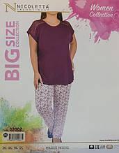 Піжама великих розмірів, Nikoletta