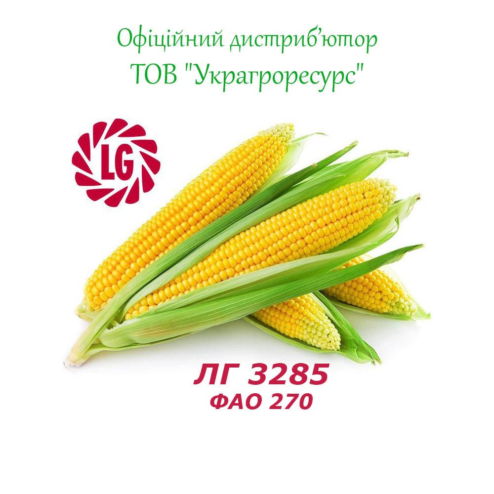 Семена кукурузы Лимагрейн ЛГ 3285