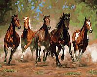 "VP 469 ""Лошади в каньоне"" Роспись по номерам на холсте 40х50см"