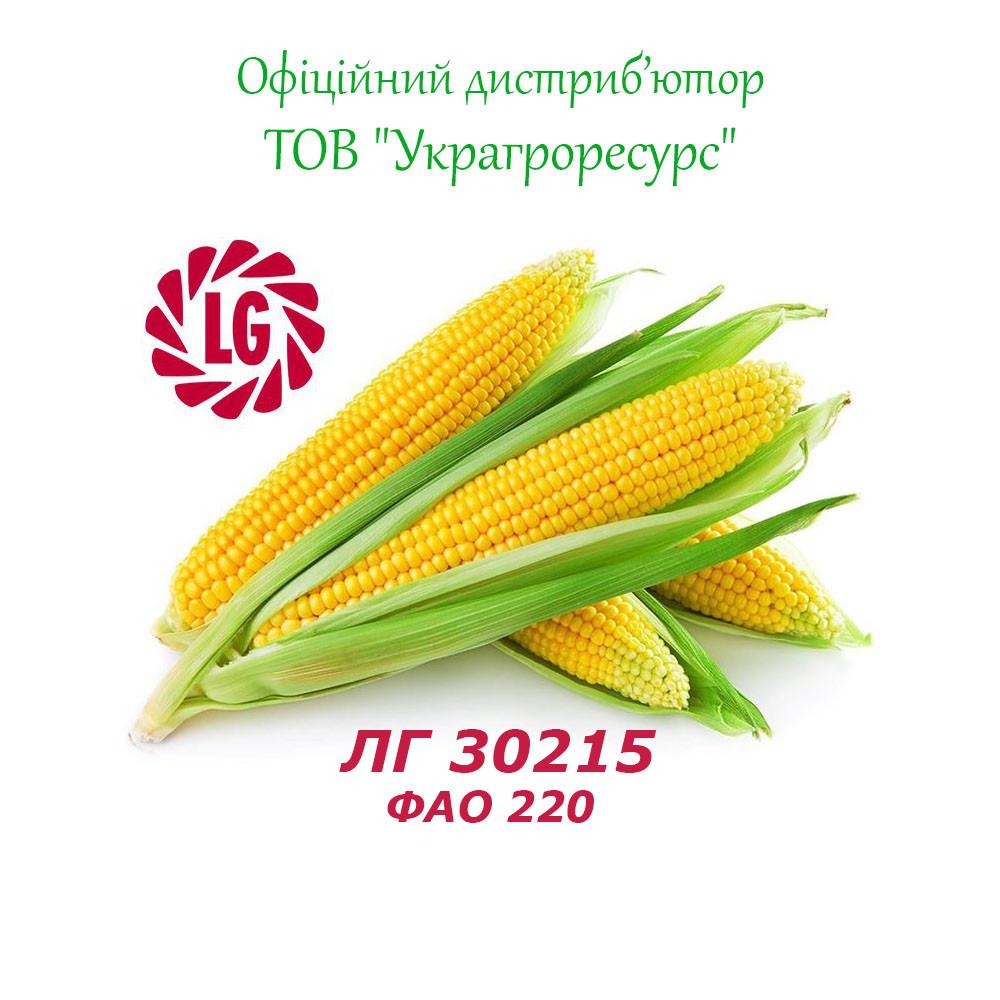 Семена кукурузы Лимагрейн ЛГ 30215