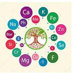Микроудобрения комплексные, моно, корректоры и стимуляторы роста
