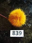 Меховой помпон Кролик, Горчица, 6/7 см, 839