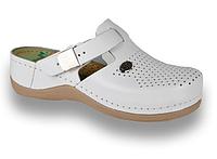 Обувь сабо женские Leon 900, фото 1
