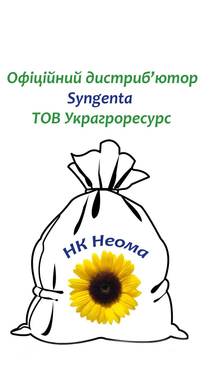 Семена подсолнечника Сингента НК Неома
