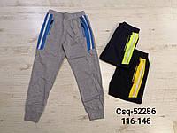 Спортивные брюки для мальчиков оптом, Seagull , 116-146 рр