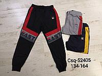 Спортивные брюки для мальчиков оптом, Mr.David, 134-164 рр