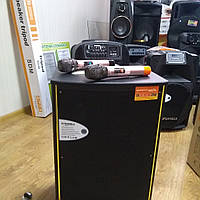 Акустическая колонка sa1-12. Автономная, мобильная. Колонка с аккумулятором, микрофонами. Тележка акустика usb, фото 1