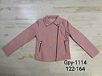Куртка кожзам для девочек оптом, Glo-Story, 122/128-158/164 см, № GPY-1114, фото 1