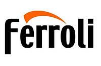 Ремонт газовой колонки, котла FERROLI в Херсоне