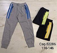 Спортивные брюки для мальчиков Seagull, 116-146 рр. Артикул: CSQ52286