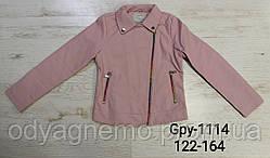 Куртка кожзам для девочек Glo-Story оптом, 122/128-158/164 рр. Артикул: GPY1114