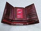 Женский кошелек цвета марсала из натуральной кожи, фото 6