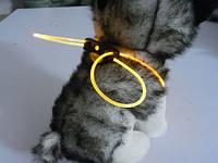 Декоративный шнурок для подсветки ошейника 80 см желтый