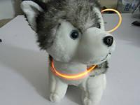 Декоративный шнурок для подсветки ошейника 80 см оранжевый