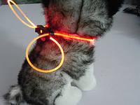 Декоративный шнурок для подсветки ошейника 80 см красный