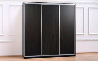 Шкаф Купе-04 2000х450х2400 Алекса мебель, фото 2