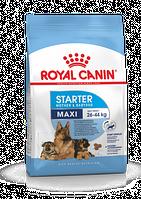 Корм Роял Канин Royal Canin MAXI STARTER 4 кг.
